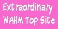 Extraordinary WAHM Top Sites
